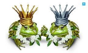frog-marriages-in-indian-culture
